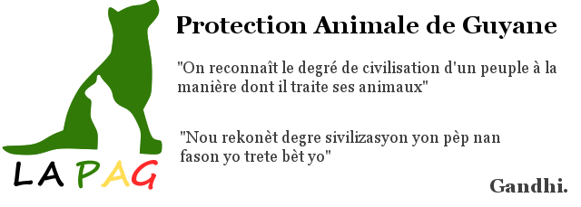 Protection Animale de Guyane